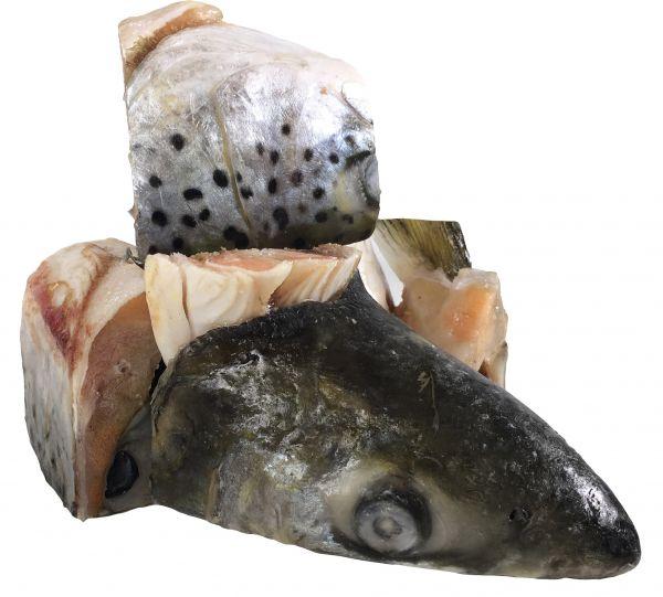 Lachsköpfe (Stücke)